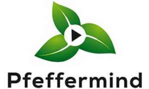 Pfeffermind Consulting GmbH