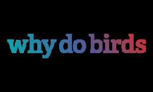why do birds