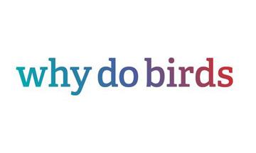 whydobirds