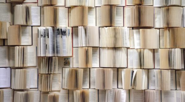 Blinkist liefert handverlesene Titel für Medienunternehmer