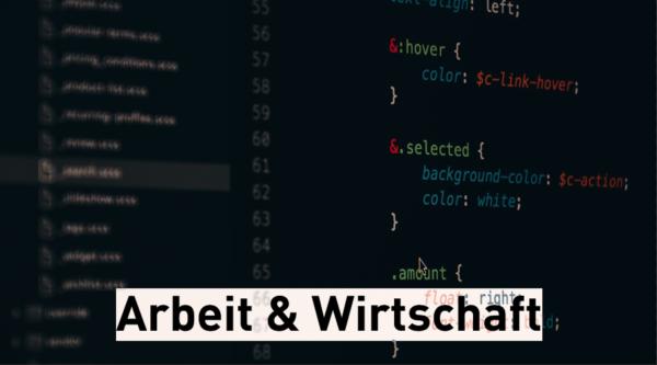 """Wahlkompass Digitales: """"Arbeit & Wirtschaft"""""""