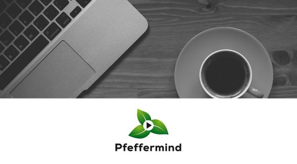 Pfeffermind: Gamification Expert
