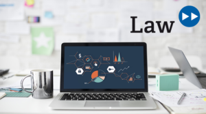 media:net LAW – Digital Assets