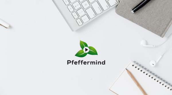 Pfeffermind: Game Designer, Consultants, Projektmanager (m/w/d)